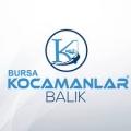 Kocamanlar Balık Restaurant Bursa