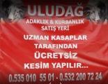 Uludağ Adaklık Kurbanlık Satış Yeri Osmangazi