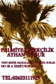 Palmiye Çiçekçilik İzmit