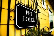 Afyon Pet Otel