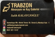 Trabzon Akvaryum Ortahisar